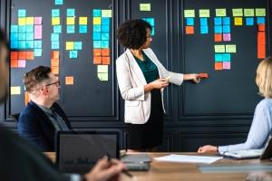 Программы менеджмента, экономики и права